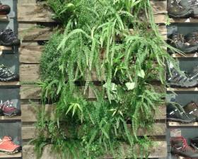 vertikální zahrada z recyklovaných palet v prodejně Keen Praha Flora